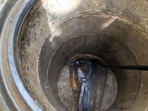 伊丹市内で排水管洗浄をさせて頂きました!!に関する画像
